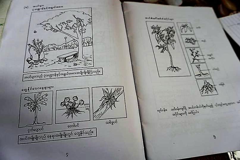 ミャンマーの理科の教科書