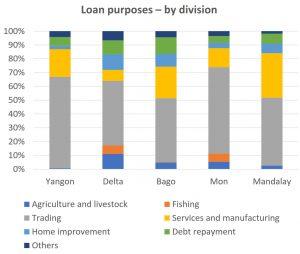 Findings Myanmar Survey Multiple Borrowing