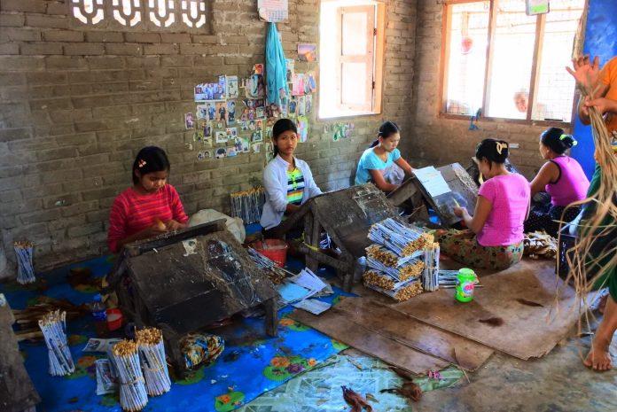 ミャンマーの葉巻工房