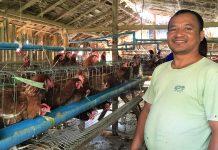 鶏小屋に立つ男性